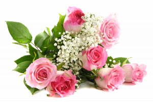Beautiful pink roses bouquet isolated on white